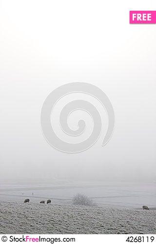 Free Winter Farm Scene Royalty Free Stock Images - 4268119