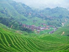 Free Terraced Field And Village Royalty Free Stock Photography - 4260097