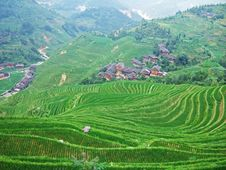Free Terraced Field And Village Stock Images - 4260114