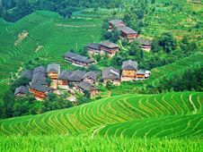 Free Terraced Field And Village Royalty Free Stock Photo - 4260115
