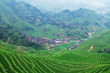 Free Terraced Field And Village Royalty Free Stock Photo - 4260205