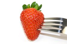 Free Strawberry On Fork Stock Photos - 4261453