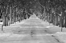 Free Winter Road Royalty Free Stock Photos - 4261868