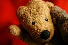 My Teddy Bear Royalty Free Stock Photo