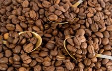 Free Lot Of Coffee-beans Stock Photos - 4265163