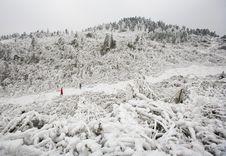 Free White Mountains Stock Images - 4265194