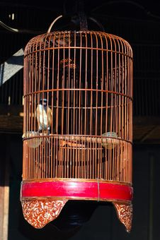 Free Indonesia, Java: Bird Cages Royalty Free Stock Photo - 4275145