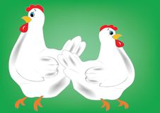 Free Two Hens Royalty Free Stock Photos - 4276048