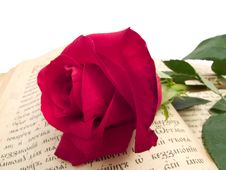Free Rose On Book Stock Photography - 4276292