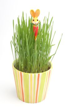Free Easter Rabbit In A Grass Royalty Free Stock Images - 4277689