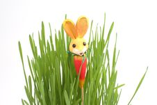 Free Easter Rabbit In A Grass Royalty Free Stock Photo - 4277755