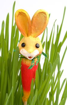 Free Easter Rabbit In A Grass Stock Images - 4277824