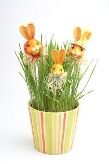 Free Easter Rabbit Family In A Grass Royalty Free Stock Photo - 4277885
