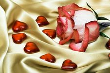 Free Red Rose On Satin With Hearts Stock Images - 4277914