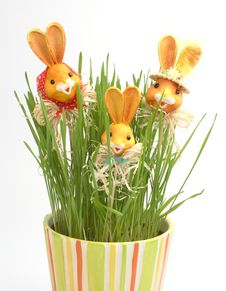 Free Easter Rabbit Family In A Grass Stock Photo - 4277930