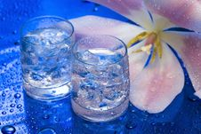 Free Glasses With Water And Flower Royalty Free Stock Photos - 4278078