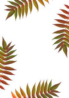 Free Autumn Beauty Stock Image - 4279641
