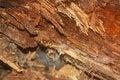 Free Wood Stock Image - 42712021
