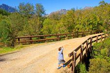 Free Little Boy Walks On Road Royalty Free Stock Photos - 4280028