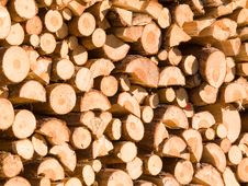 Free Woodpile Royalty Free Stock Photo - 4280765
