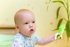 Free Baby Keep Leaf Stock Photos - 4283823