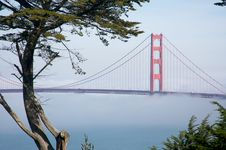 The Golden Gate Bridge In The Morning Fog Royalty Free Stock Images