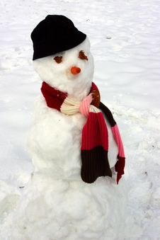 Free Snowman Stock Images - 4288434
