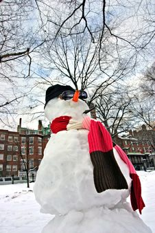 Free Snowman Stock Photo - 4288440