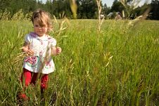 Free A Walk In The Field Royalty Free Stock Images - 4290499