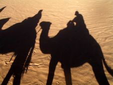 Free The Shadow From Camels Stock Photo - 4291150