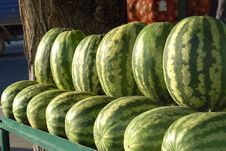 Free Green Water-melons Stock Image - 4294801