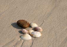 Free Pebbles Royalty Free Stock Photos - 4297498