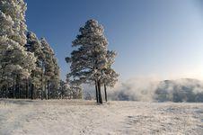Free Winter Scene Stock Photography - 4297562
