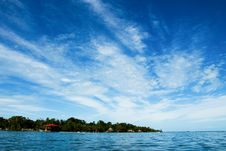 Free Tropical Stock Photography - 4297692