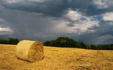 Free Bale Of Hay Stock Images - 42947054
