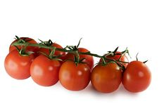 Free Tomatoes Isolated On White Stock Photography - 434492