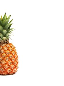 Free Pineapple Stock Photo - 434660