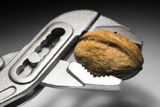 Free Nutcracker 1b Stock Image - 435701