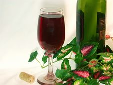 Free Solo Glass Of Red Wine And Wine Bottle Amongst Ivy Leaves. Stock Photos - 437343