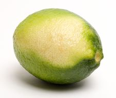 Free Lime (the Other Side) Royalty Free Stock Images - 438879
