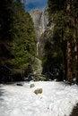 Free Lower Yosemite Falls Royalty Free Stock Photo - 4301555