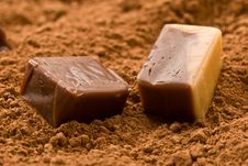 Free Cacao Candy Stock Images - 4300634