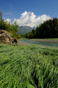 Free Grass,stream And Mountains, Alaska Royalty Free Stock Image - 4301706
