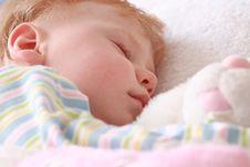 Free Little Boy Stock Image - 4302851