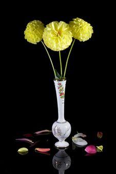 Free White Vase Of Yellow Dahlias. Stock Images - 4304724
