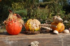 Autumn Autostill-life With Pumpkins Royalty Free Stock Photo