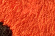 Free Black Spot On Red Fur Stock Image - 4309971