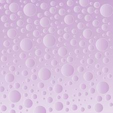 Free Purple Bubble Background Stock Photography - 4311482