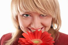 Free Green-eyed Woman In Red Royalty Free Stock Images - 4311539