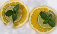 Lime And Orange Segments Whith Mint Royalty Free Stock Photography